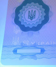 Диплом - свечение УФ (Москва)
